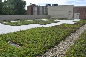 Sustainability-Engineering Building031