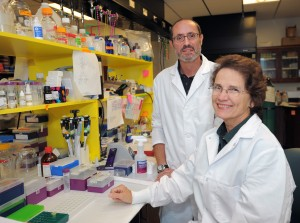 Photo of Dr. Elaine Hardman, right, and Dr. Philippe Georgel of Marshall University, who are investigating the effects of omega-3 fatty acids on breast cancer development