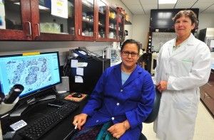 Photo of Drs. Piyali Dasgupta, left, and Monica Valentovic of Marshall University