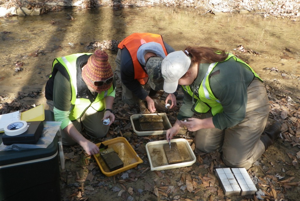Photo of Marshall University students doing water research field work