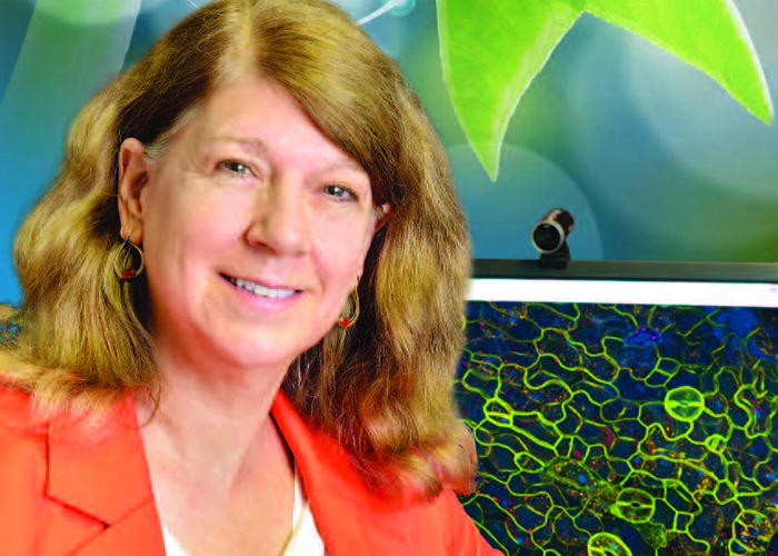 Photo of Dr. Marcia Harrison