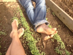 Get your hands and feet dirty and help grow local campus produce.