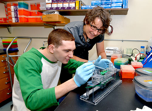 Marshall University faculty member receives prestigious NSF CAREER award